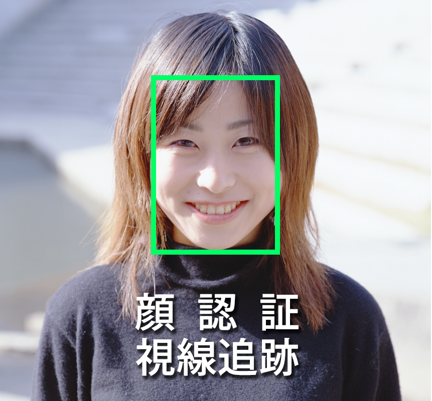 顔認証システム、視線追跡