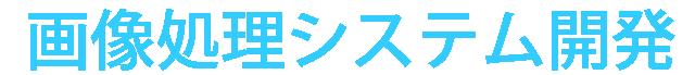 顔認証 画像処理システム開発 システムベンダー ギトウシステムズ株式会社
